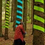Istället för lövverk – ett annat språk av Birgitta Eriksson-Fast