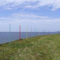 The Painting Field av Torbjörn + Jukka Limé + Värelä