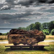 Dead Tree Project - Tree Brothers (concept I) av Ryszard Litwiniuk